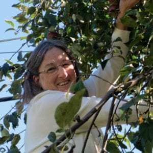 Helen picking apples from the apple tree in her back yard